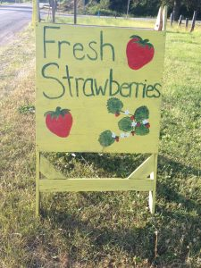 It's the time of year that you see the road side stands offering locally grown fresh strawberries.