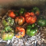 Turning the peppers over the embers for complete cooking