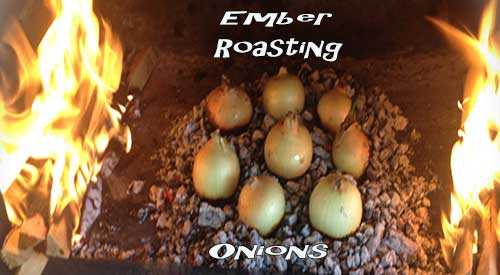 Our Roasted onions in fireplace ashes!