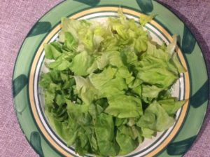 Specially Diced Lettuce Arranged in a Bowl