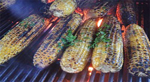 The how to instructions for cooking fresh corn on a gas grill!