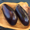 we selected two nice and plump eggplants for our ember cooking