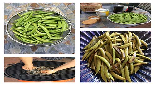 Smoking Snow Peas steps featured in this blog.